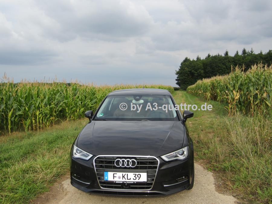 Audi A3 8v 2 0 Tdi Belugabraun